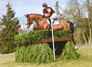 Black Country Saddles - Ian Wills and Hartpury Sky Is The Limit in action.