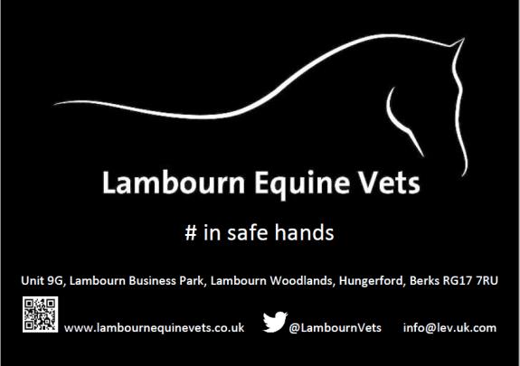 In safe hands lambourn equine vets