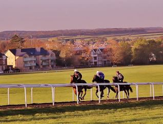 Racehorses working on the Newmarket Gallops.