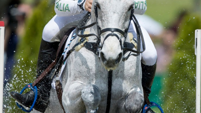 Shane Rose and CP Qualified lead the victorious Australian team in the FEI Nations Cup™ Eventing, and finish individual 2nd, at Aachen (GER) (FEI/Dirk Caremans)