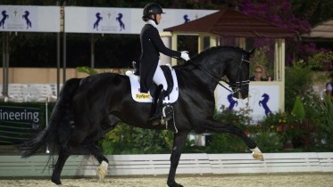 Achieve the perfect 15m circle with the help of International Grand Prix dressage rider Hayley Watson-Greaves.