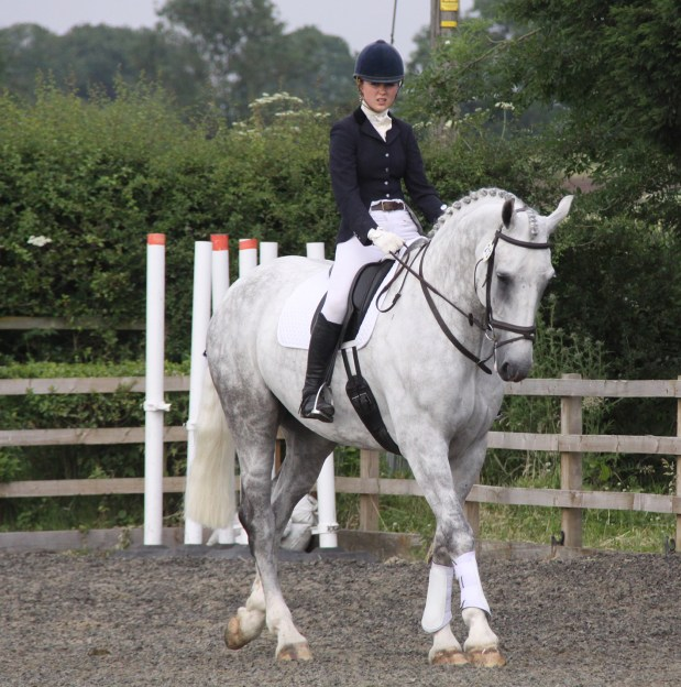 How to leg yield - Give your horse time to relax