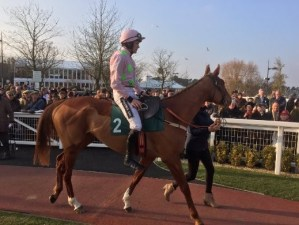 Racing UK via Twitter Limini Beats Apple's Jade to Strengthen Mares' Hurdle Claims
