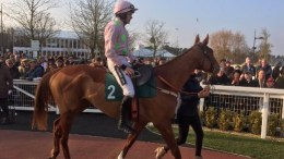 Racing UK via Twitter Limini Beats Apple's Jade to Strengthen Mares' Hurdle Claims