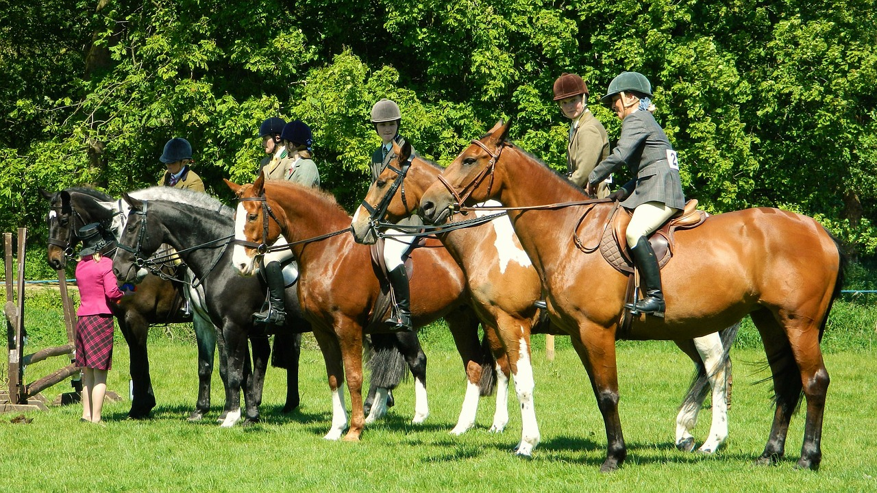 Horse Sport Prepares For Brexit