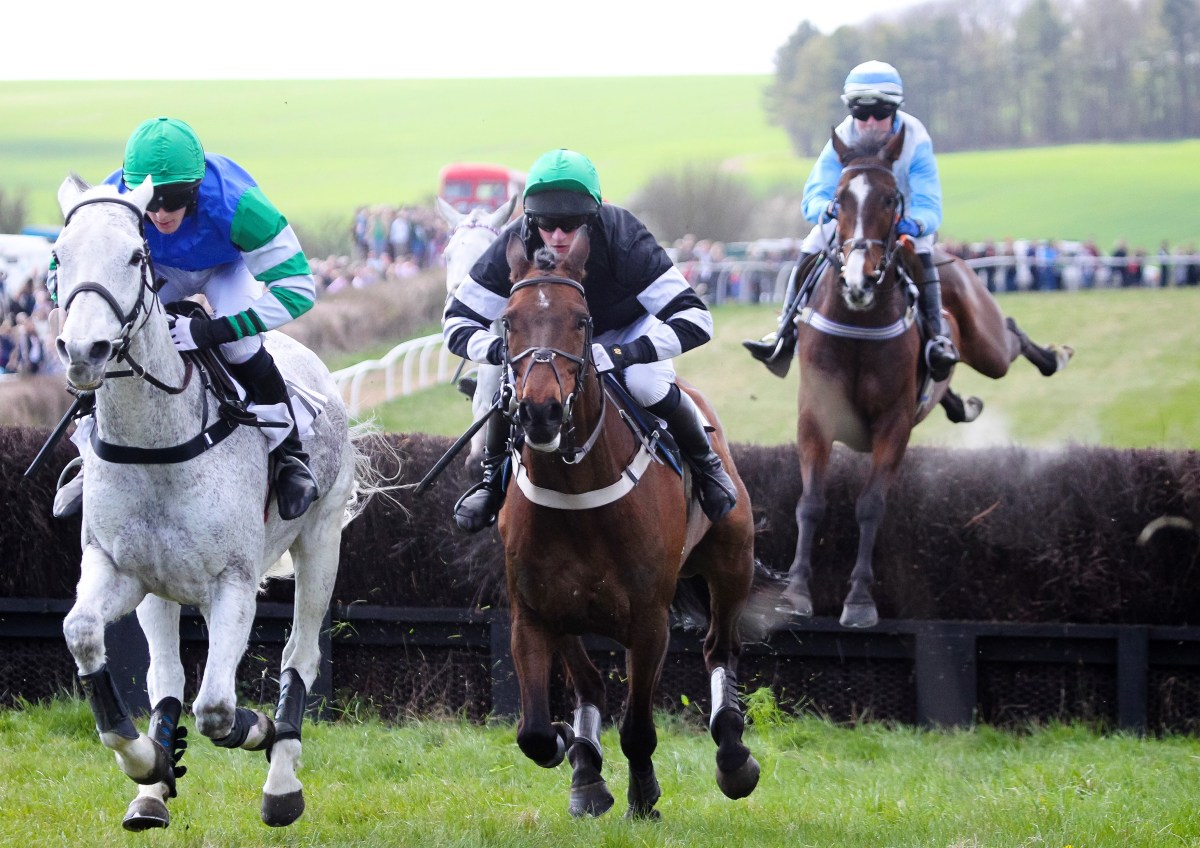 The Cazenove Capital Point-to-Point and Country Day at Lockinge