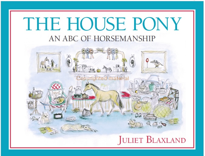 'The House Pony' Book Review