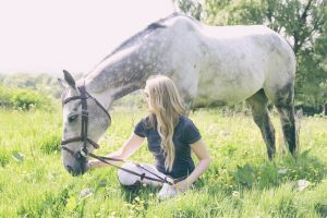 LD Equestrian