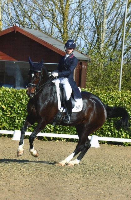 Collective Equestrian Riders to Compete at Hickstead CDI