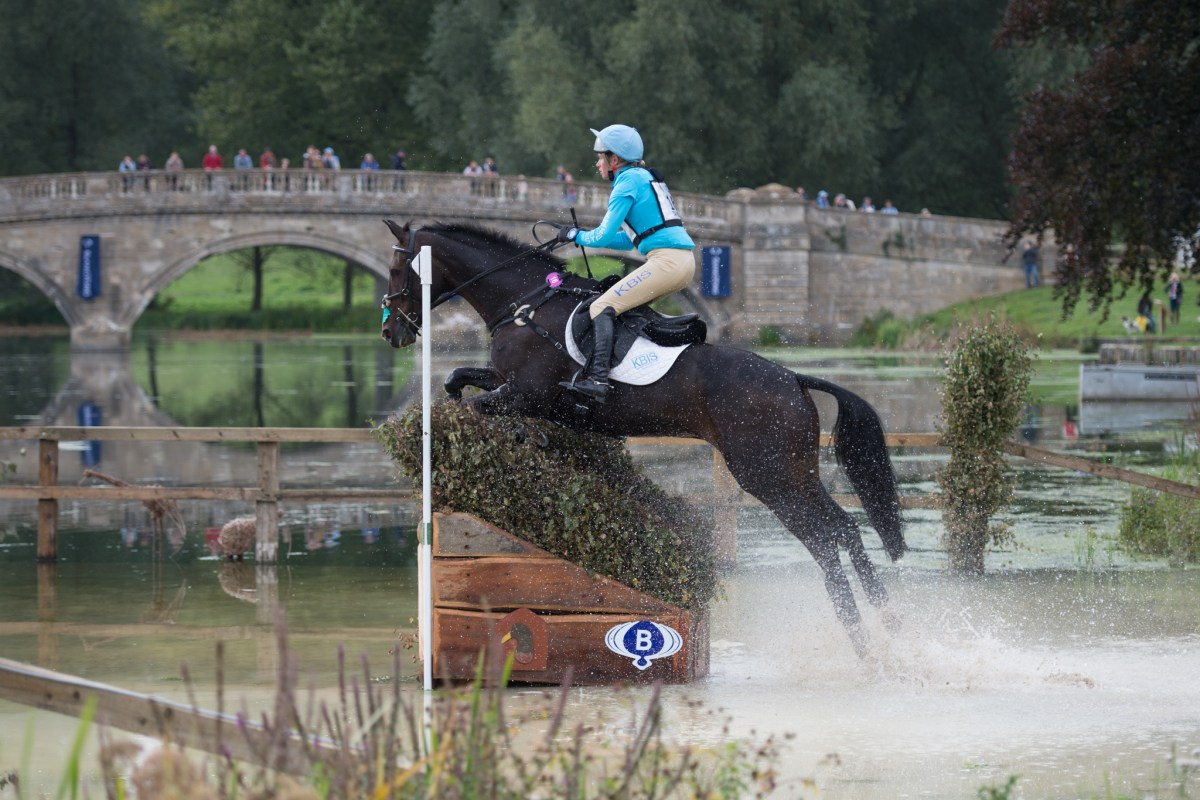 Cooley Horses Reign at Blenheim Palace International