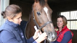 The British Racing School and The Animal Health Trust