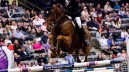 Ireland's Denis Lynch and RMF Echo flying high as they capture a take top class win at the Longines FEI World Cup™ Jumping in Lexington (USA) overnight. (FEI/Ashley Neuhof)