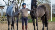 Andrew Hoy with two of his string: On the left seven-year-old gelding Brigant, by Caesar van de Helle and on the right four-year-old approved stallion OSO Monolitos, by Huzar.