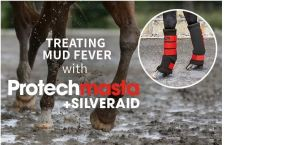Protechmasta SilverAid Boots Treating Mud Fever - Speed up recovery and aid healing