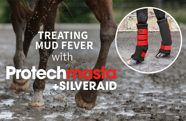 Treating Mud Fever - Speed up recovery and aid healing