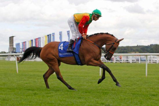 Arabian Racing at Royal Windsor Racecourse, Monday May 28th. Image credit Equine Creative Media