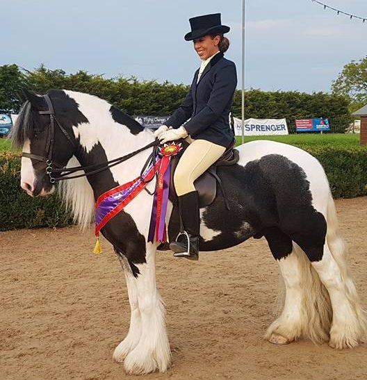 Jack now, ridden by Lacey Smith. Image credit Sheila Henry