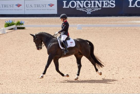 FEI World Equestrian Games™; GB; Grade 2; Individual Championship; Paradressage; Sophie Wells GBR on C Fatal Attraction Photo FEI/Liz Gregg