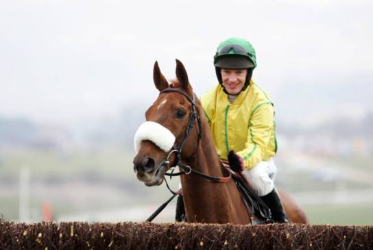 successful horses at Cheltenham Image for illustration only Source: facebook.com/kevinblakehorseracing
