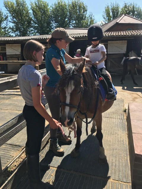 Kingsmead Equestrian Centre based in Surrey is holding a special event to mark Disabled Access Day