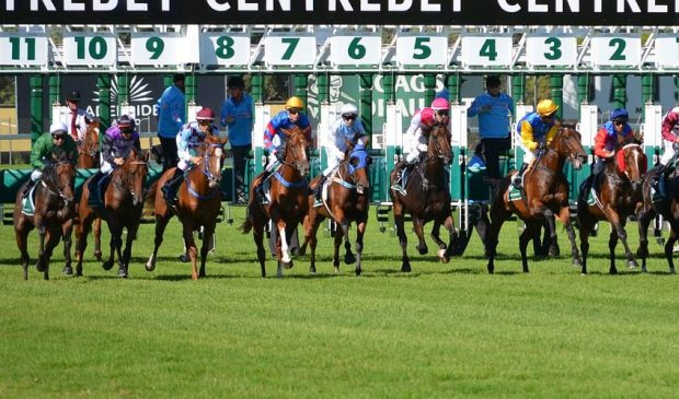 The Oakley Hunt Point-to-Point Report