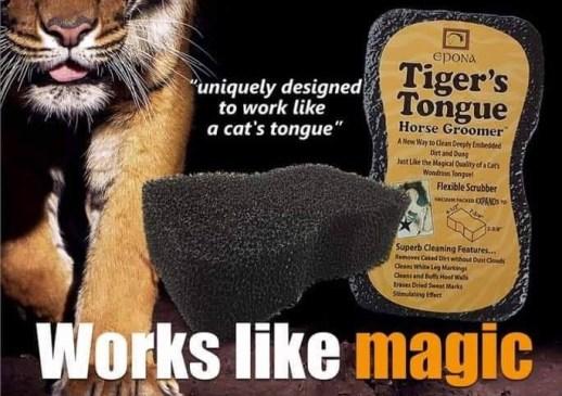 The Epona Tiger Tongue