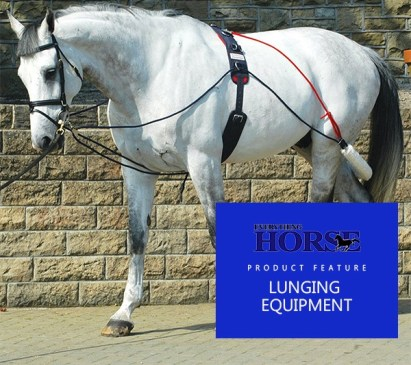 lunging equipment for horses
