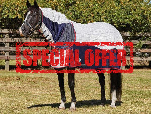 Viovet special offers