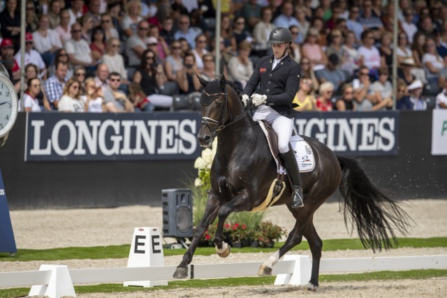 Germany's Frederic Wandres and Zucchero OLD won the 6-Year-Old title at the Longines FEI WBFSH Dressage World Breeding Championships for Young Horses 2019 in Ermelo (NED) yesterday. (©FEI/Hippo Foto - Dirk Caremans)
