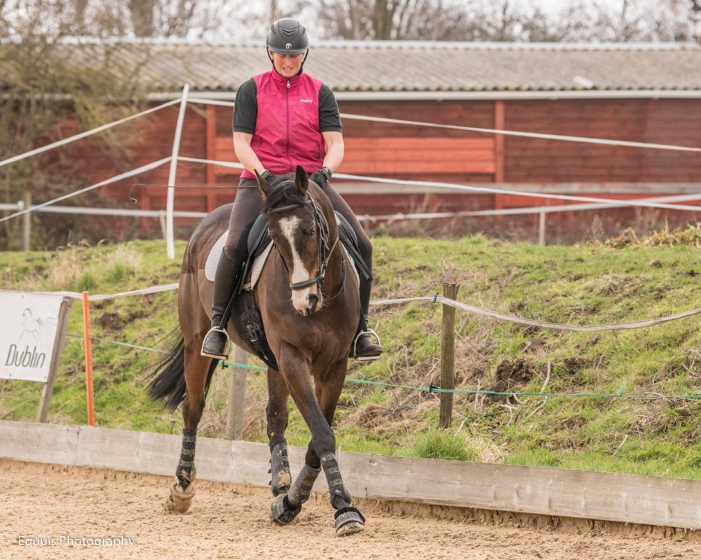 Exercises for an Ex-Racehorse
