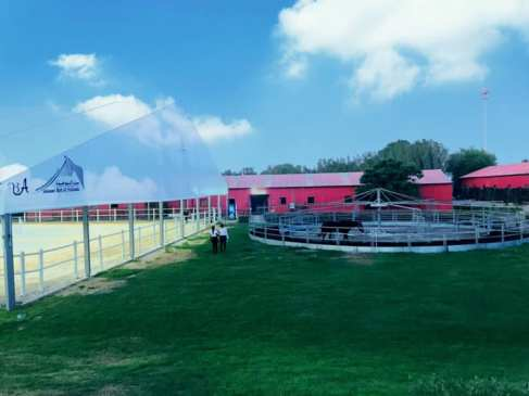 Al Hamra Equestrian Club