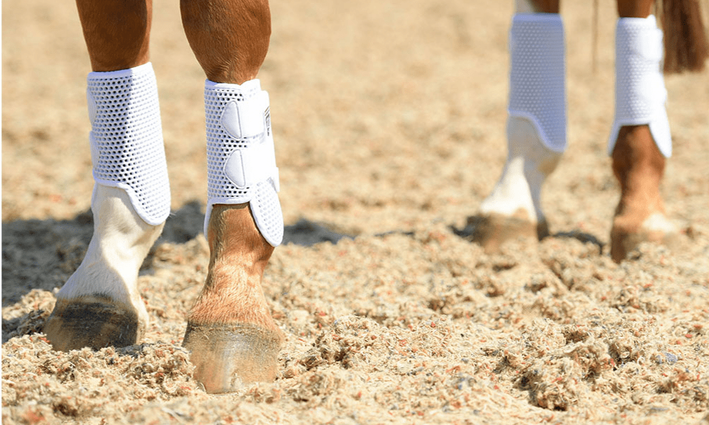 Brushing Boots: A Complete Guide