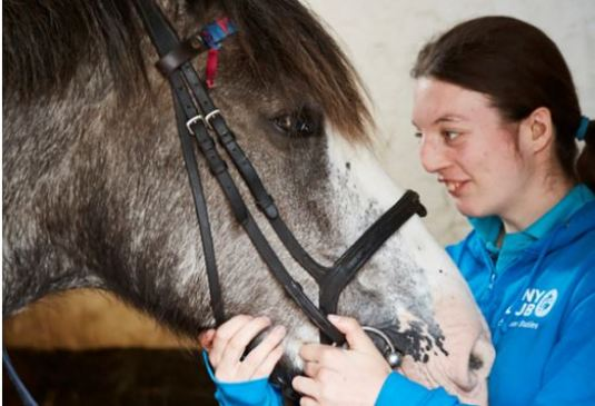 horse riding for autistic people