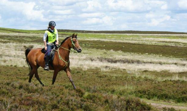 Endurance GB rides resume image shows Emma Husband and LTF Kalisha