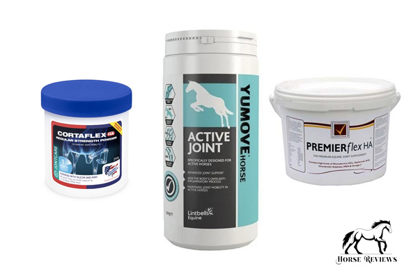Joint Supplements for Horses