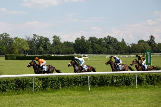 July Cup 2020 - Horse racing image for illustration