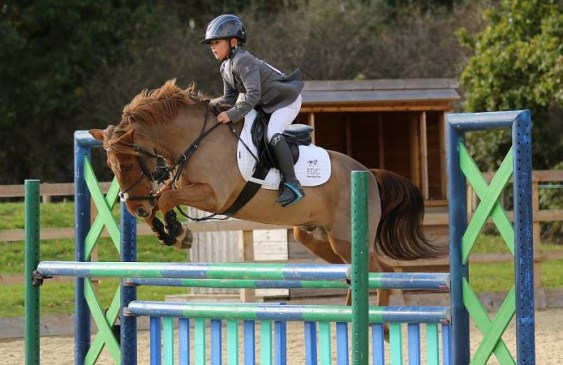 Ten Year Old Alfie Diaper To Make His Mark in Showjumping