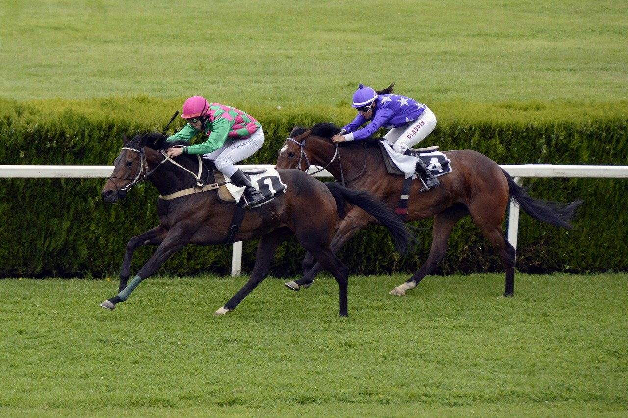 horse-racing-