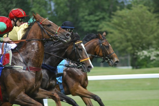 King George Cup Ascot Image for illustration purposes only - horses racing