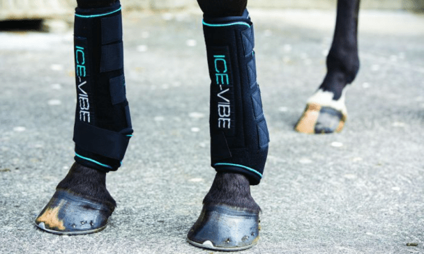 Ice Boots For Horses