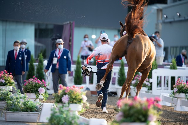 Ben Maher (GBR) & Explosion W - Jumping – 1st Horse Inspection - Equestrian Park, Setagaya City, Tokyo. Ben Maher (GBR) & Explosion W - Jumping – 1st Horse Inspection - Equestrian Park, Setagaya City, Tokyo, Japan - 31 July 2021 Copyright Jon Stroud Media