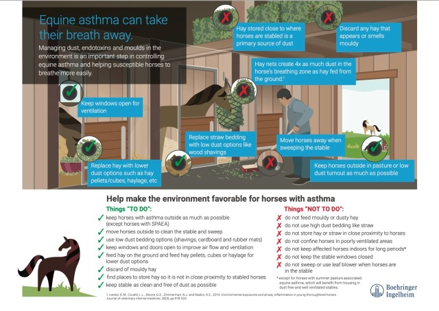 Equine Asthma can take their breath away infographic
