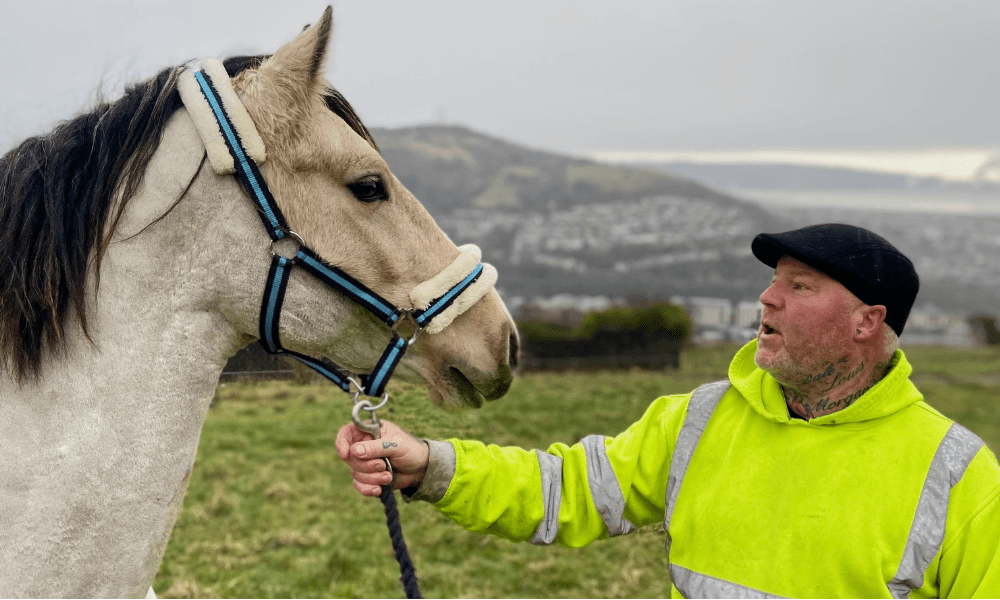 BBC equestrian programme Our Lives: The City of Horses' on BBC One