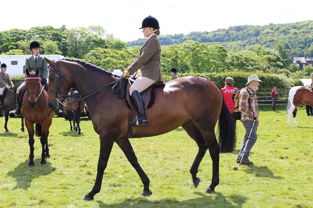 Horse Riding Helmet horse rider wearing a velvet helmet