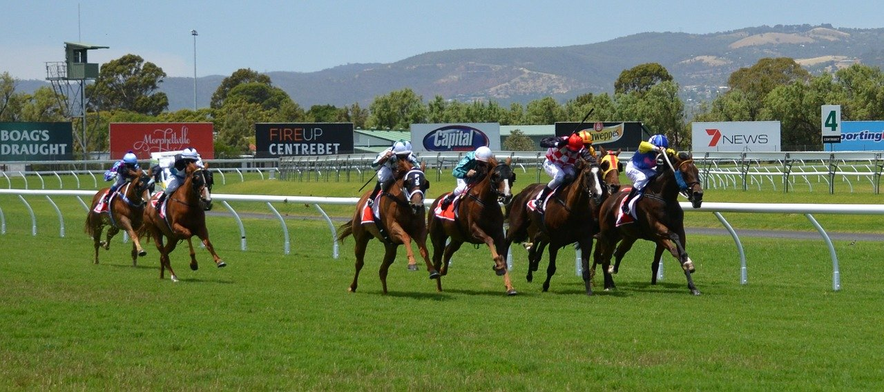 Image of horses racing on a track The best betting promotions for horse racing punters