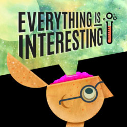 Everything Is Interesting