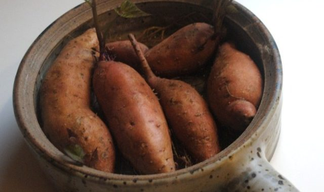 souffle sweet-potatoes1
