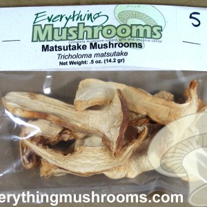 Matsutake Mushrooms, Tricholoma magnivelare - .5oz pack