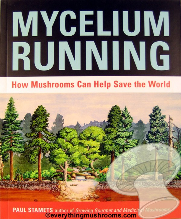 Mycelium Running : How Mushrooms Can Help Save the World by Paul Stamets