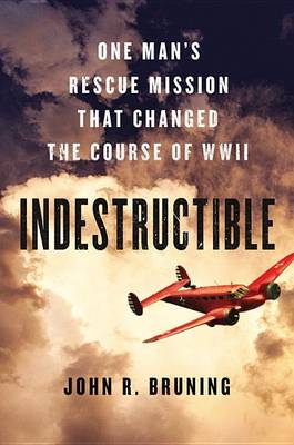 Review of Indestructible